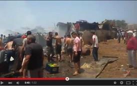 فيديو. حريق مهول يأتي على قطيع للأبقار والعجول بسيدي مومن