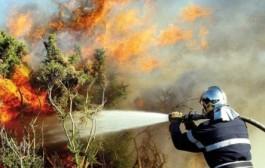 اندلاع حريق مهول بغابة 'باب تازة' نواحي شفشاون