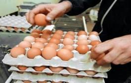 الحكومة تستبق حلول شهر رمضان وتخفض من رسوم استيراد البيض لتفادي ارتفاع الأسعار