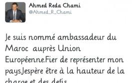 'رضا الشامي' على تويتر : 'تم تعييني سفيراً لدى الاتحاد الأوربي'