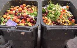 تقرير أممي يفضح تبذير المغاربة برمي ما قيمته 500 درهم من الطعام في القمامة يومياً