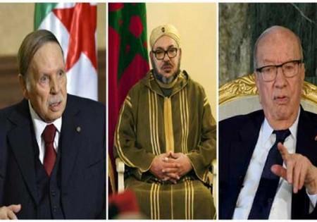 الوضع الصحي لرئيس الجزائر و الملك محمد السادس والعمر المتقم لسبسي                    يقلق فرنسا