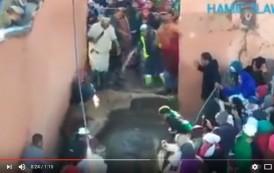 فيديو . الجاهلية تمشي على رجليها في موسم مولاي إبراهيم