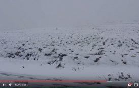 فيديو . الثلوج تكسو جبال الريف