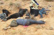 الجزائر ترد على المغرب : مأساة السوريين لا يجب أن تكون محل متاجرة