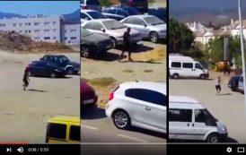 فيديو . نايضة قرطاس بين مغاربة و إسبان بسبب 'الحشيش'