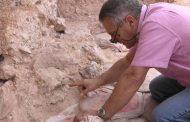 باحث في العلوم الإنسانية : الإنسان العاقل المكتشف بالمغرب أقدم من آدم وحواء