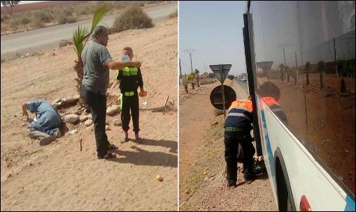 صور . مستخدمو شركة للحافلات يرمون بشيخ و ابنه على قارعة الطريق بسيدي بيبي بعدما أضاعوا تذكرتهم