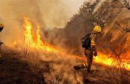 الحرائق تودي بحياة 35 شخصا في البرتغال واسبانيا