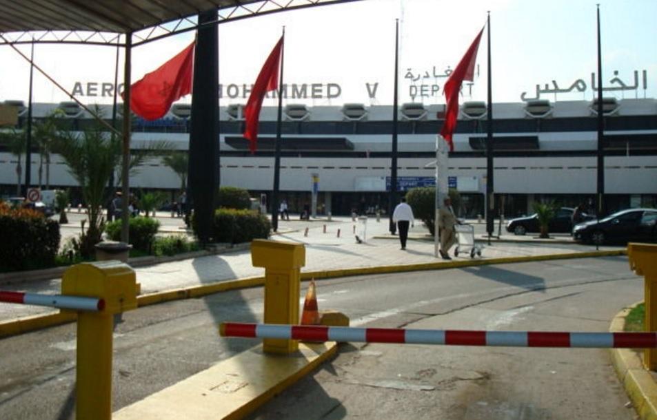 إحباط محاولة تصدير 26 صقراً حياً بمطار الدارالبيضاء