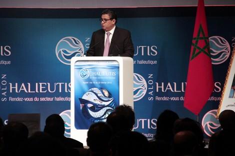 """أخنوش : استدامة الموارد السمكية محور رئيسي في مخطط """"أليوتيس"""" !"""