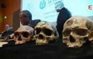 مدير معهد الآثار يخلق الجدل : الإنسان القديم الذي اكتشف بالمغرب لم يكن ناطقا لا بالأمازيغية ولا بالعربية ولا بأية لغة