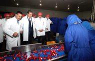 أخنوش يشرف على تدشين مشاريع فلاحية وزراعية بالعرائش بميزانية ثلاثة ملايير