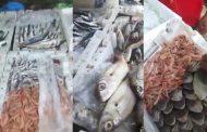 بالفيديو.إنخفاض كبير لأسعار الأسماك بأكادير بعد نجاح حملة مقاطعة الغلاء