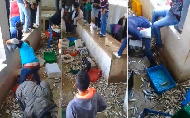 فيديو/تطور خطير وصمتٌ للسلطات..مواطنون يتلفون صناديق السردين بتطوان بسبب غلاء الأسعار