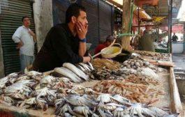 السماسرة يرفعون أثمان الأسماك لمستويات قياسية في أسواق وجدة !