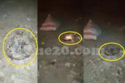فيديو | أسلاك كهربائية عالية التوتر و عارية تهدد حياة المواطنين بحي شعبي بأسفي !
