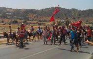 مواطنون بتاوريرت يهددون بمسيرة على البغال احتجاجاً على حرمانهم من 'الطوبيس' !