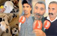 فيديو/ كسابة : البيع فـ'الكاراجات' مسموح به بشرط وضع 'الطانكات' للغنم !