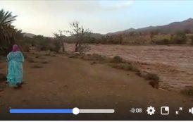 فيديو | ارتفاع منسوب واد بـ'طاطا' بفعل الأمطار الغزيرة و مواطنون يتخفون من الفيضانات !