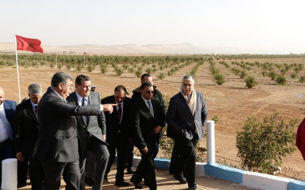 أخنوش يزور واحة فكيك و مناطق فلاحية قريبة من الشريط الحدودي مع الجزائر !