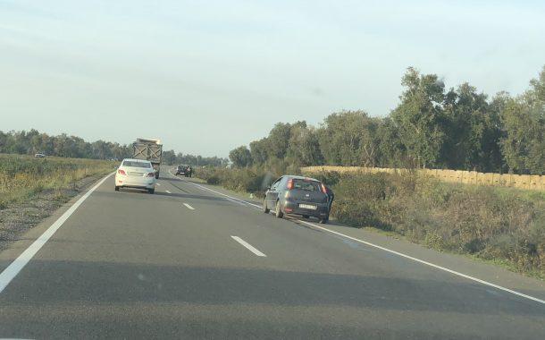 صور/الدرك يتخلى عن واجب حماية الطريق السيار وسط انتشار لفوضى بيع الزيتون بين الرباط والقنيطرة