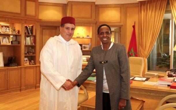 إشادة أفريقية بمجهودات المغرب في تطوير الفلاحة بالقارة السمراء للقضاء على الجوع