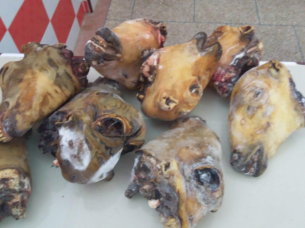 صور/ حجز رؤوس أغنام ولحوم فاسدة كانت موجهة للإستهلاك ببوجدور !