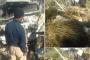 صور/ مصرع شخصين في حادثة سير مروعة بجبال تافوغالت نواحي بركان !