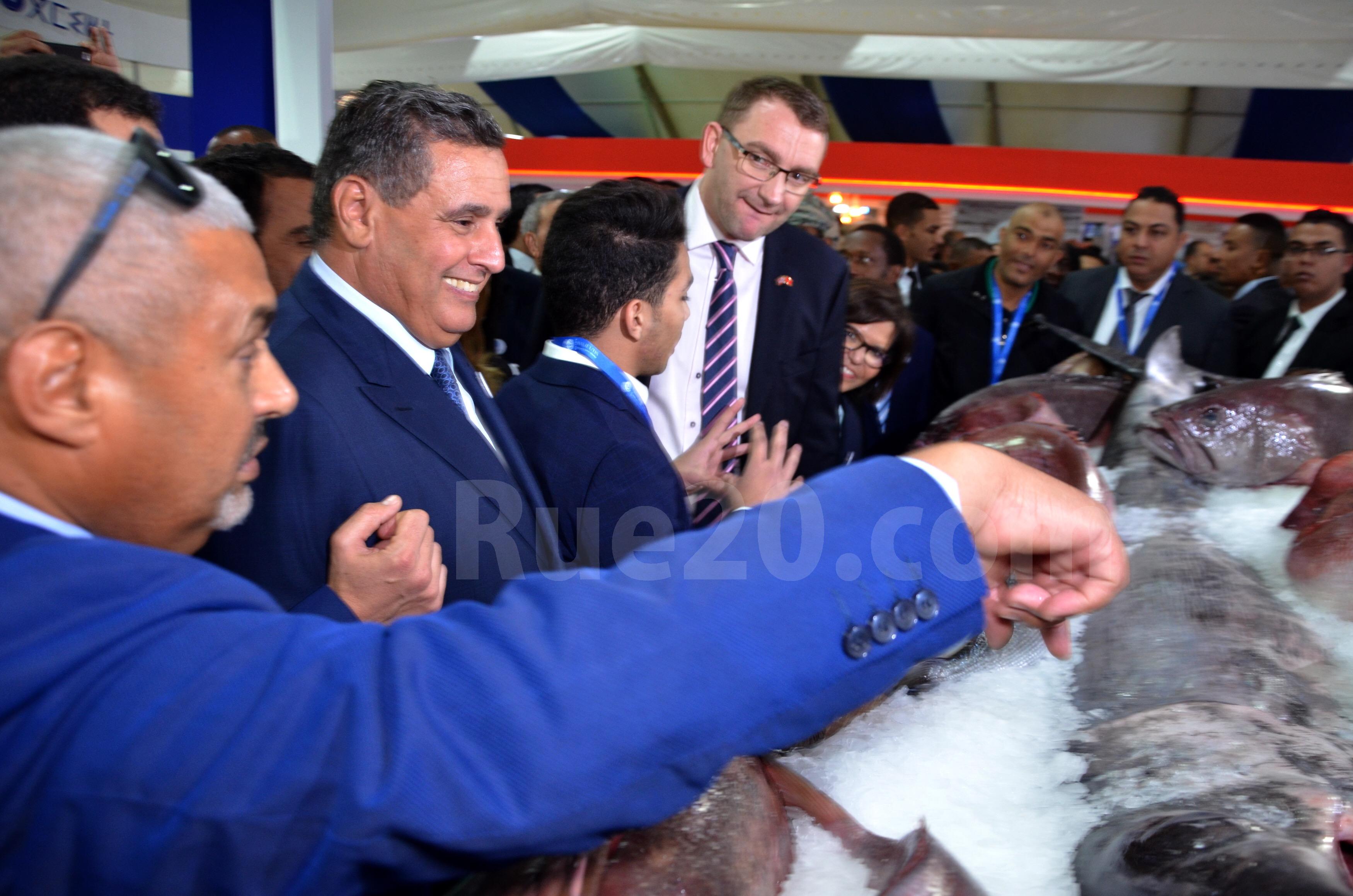 إرتياح لمستوى التعاون المغربي الإسباني في قطاع الصيد البحري