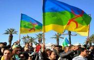 تماينُوت: ما يقع للغة الأمازيغية على يد المُتطرفين هو تملص للدولة من إلتزاماتها الدستورية