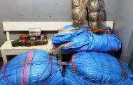 حجز 2 طن من مخدر الشيرا داخل إسطبل بأصيلة !