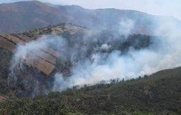 إندلاع حريق مهول بغابة رأس عصفور الحدودية بوجدة !