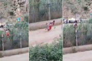 فيديو | جزائري يخترق الحدود المغربية احتفالاً بتأهل منتخب بلاده !