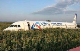طيور تُجبرُ طائرة روسية تقل 230 شخصاً على الهبوط إضطرارياً بغابة