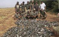 إيفاد لجنة مركزية للتحقيق في مجزرة الخليجيين البيئية ضواحي مراكش