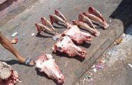عظام و رؤوس الحمير تستنفر سلطات الدارالبيضاء بعد العثور عليها بالقرب من مطاعم