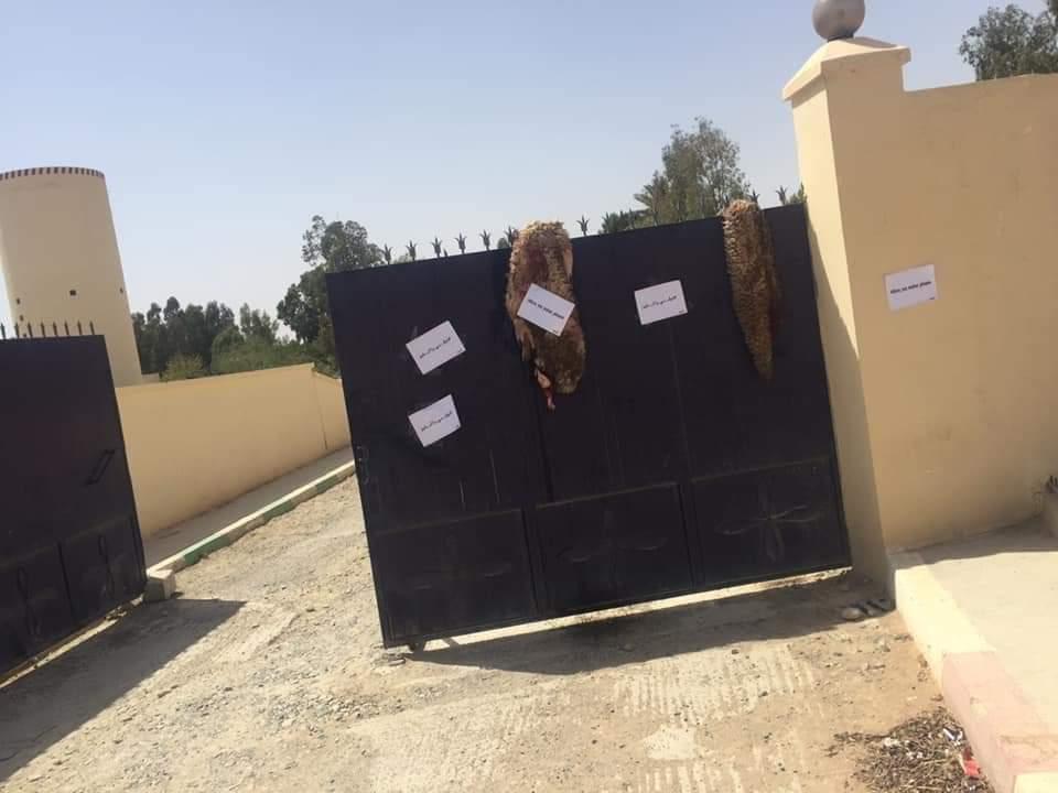 صور/ مواطنون بجرسيف يعلقون جلود الأضاحي أمام مقر لONEP احتجاجا على انقطاع المياه يوم العيد !