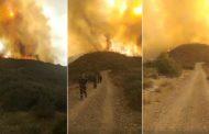 فيديو | حريق مهول يأتي على أراضي غابوية بجبال الدريوش !
