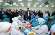 مشاريع المغرب الأخضر ترفعُ من إنتاج الزيتون بالجهة الشرقية وصادرات الصناعات التحويلية للخارج
